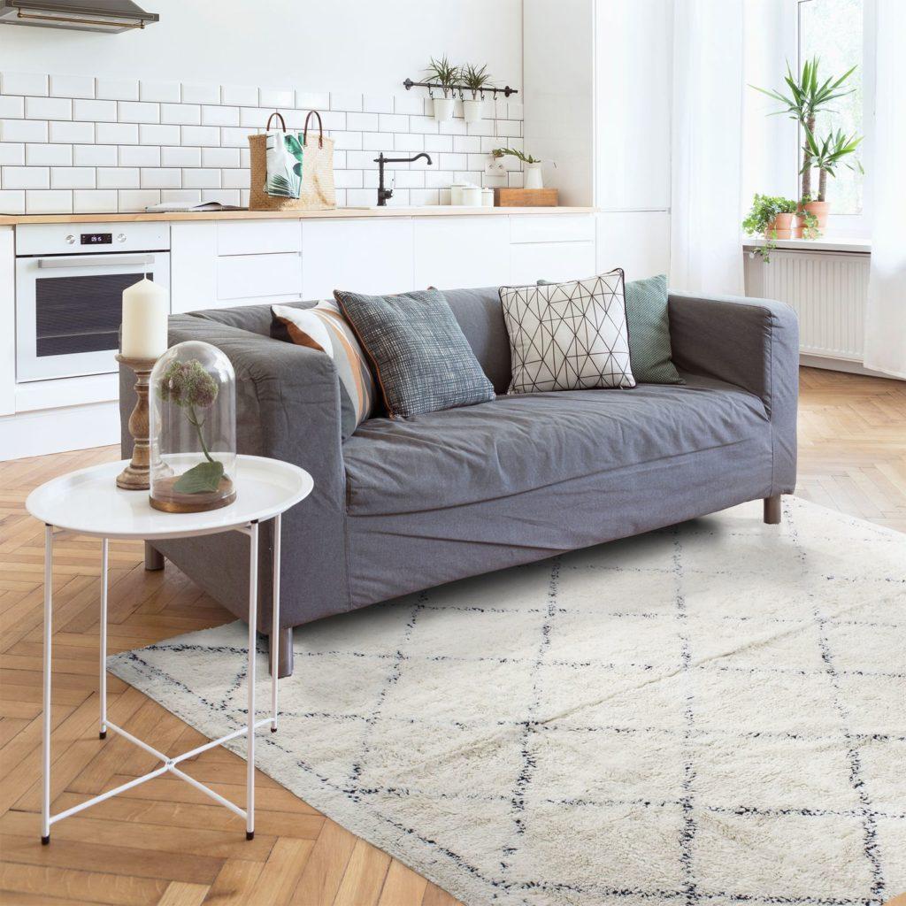 tapis sobre pour salon